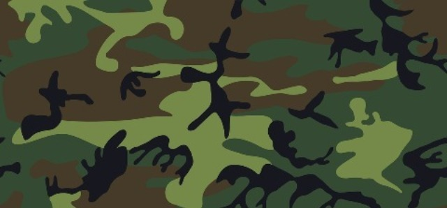 Military Transition Advice - Camouflage